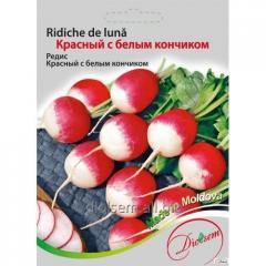 Семена Редиса Красный с белым кончиком 20гр.