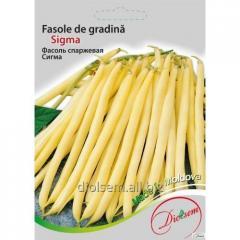 Sigma beans 20 g.