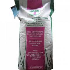 Семена свеклы кормовой центаур поли мешок 20 кг