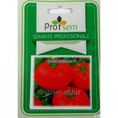 Seeds of tomato Nastiona F1