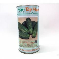 Cucumber seeds Wiskonsin