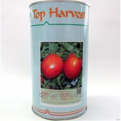 Семена томатов Peto 86