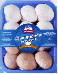 """Champignons fresh """"Allsorts"""