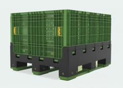 Plastic collapsible container ECBN80 / Container