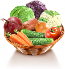 Export vegetables-onions, cabbage, beets, carrots