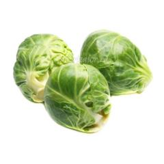 Cabbage from Moldova