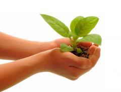 Экологическое удобрение для фруктов в Молдове