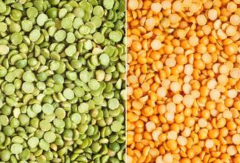 Peas in Moldova and for export