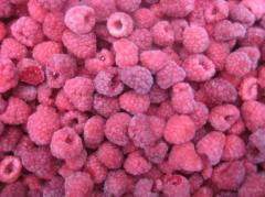 Les fruits congelé