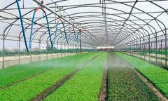 Биопрепараты для овощных и цветочно-декоративных