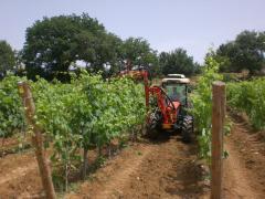 Машина для чеканки виноградников DE800 (3+1+3P)