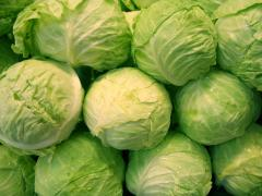 GSM cabbage: 068633385 GSM: 079999383
