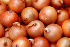 GSM onions: + 373 68633385 GSM: + 373...