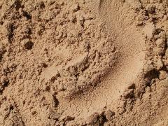 Песок Nisip spalat