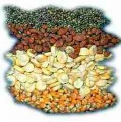 Семена с/х - томаты, перцы, огурцы, кабачки,