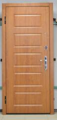 Входная дверь Эконом вариант 3