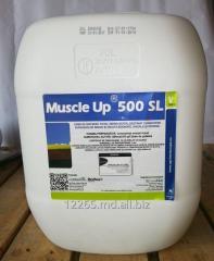 TOTAL HERBICIDE - MUSCLE UP 500 SL (GLIFOSAT).