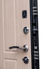 Дверь входная 1-004