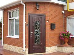 Дверь входная 1-007