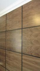 Plywood decorative Office Fresh