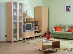 Pereţi despartitori pentru apartament