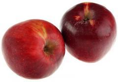 Яблоки Прима Руж