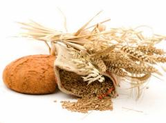 Пшеница высокого качества