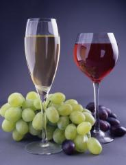 Wineproducing products