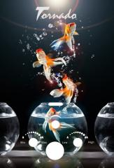 Газовая колонка TR 20 GOLDFISH Aqua