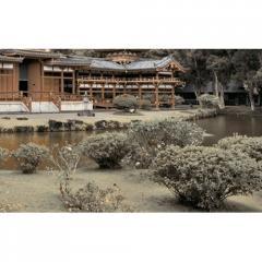 Декор Bamboo Brown №4 25x40см