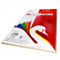 Бумага цветная, А4, 50 листов (ассорти) 10 цветов,