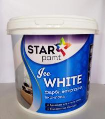 Краска для стен и потолков Star Paint
