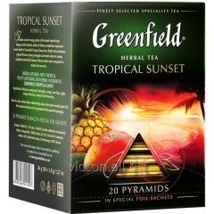 Greenfield в пирамидках TROPICAL SUNSET, чай