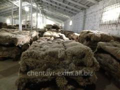 Шкуры овечьи натуральные