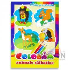 Детская книжка раскраска - ДИКИЕ ЖИВОТНЫЕ