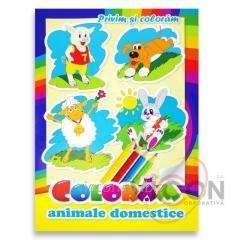 Детская книжка раскраска - ДОМАШНИЕ ЖИВОТНЫЕ