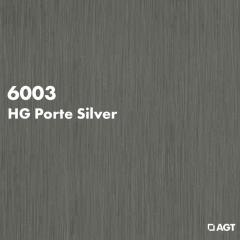 Панель 6003 - HG Porte Silver