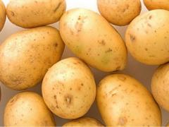 Seed potatoes, Riviera