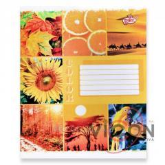 Тетрадь А5, 60 листов, цветная обложка, BRISK