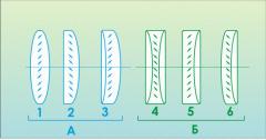 Линзы цилиндрические плосковыпуклые и
