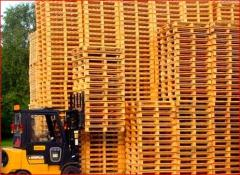 Pallets for expor