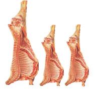 Свежее охлаждённое мясо ягнёнка оптом