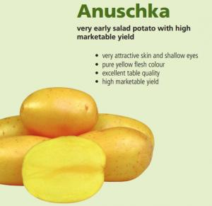 Potatoes Anushka