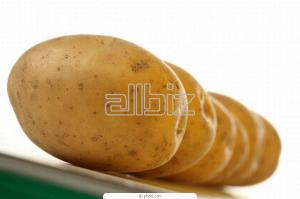 Antin's potatoes