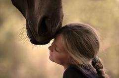 Конные прогулки, прокат лошадей
