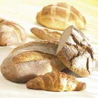 Закваска хлебная Фиделио LW 90