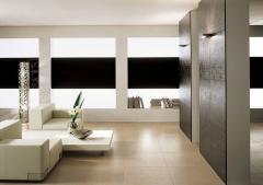 Tile ceramic faience - white ceramics