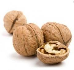 Walnuts, for export, walnut in Moldova for Expor