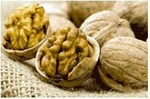 Nuts, Nuts for export, Nuts at the best price
