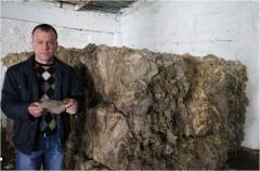 Шерсть овечья в Молдове на Экспорт
